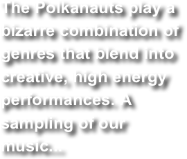 The Polkanauts play a bizarre combination of genres that blend into creative, high energy performances. A sampling of our music...